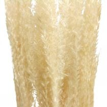 Dried deco grass natural ornamental grass dry deco 6 stems