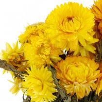 Straw flower yellow dried dried flowers decoration bunch 75g