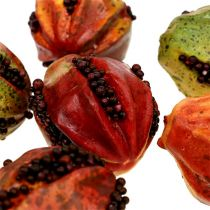 Autumn fruits 3.5cm red, brown 24pcs