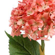 Hydrangea pink 80cm 1p