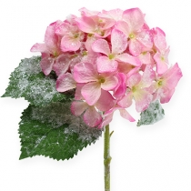 Hydrangea pink with snow effect 25cm