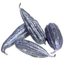 Loofah Fruit Violet 14cm - 20cm 10pcs