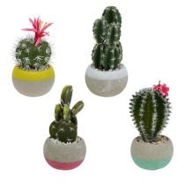 Cactus in pot Mix H13cm 4pcs