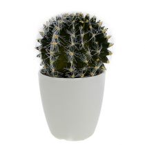 Cactus in pot green 14cm