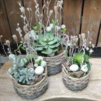 Woven basket oval planter natural, gray 29 / 24cm, set of 2