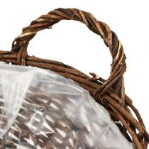 Basket shell round unpeeled