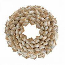 Decorative wreath snails Maritime decorative door wreath sea snails Ø25cm