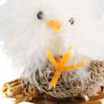 Chicks in the nest 8cm