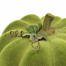 Decorative pumpkin flocked moss green 32cm