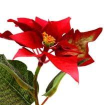 Artificial flowers poinsettia red L73cm