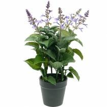 Artificial lavender in a pot, lavender pot, Mediterranean artificial plant