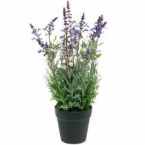 Flower decoration lavender in pot artificial plants