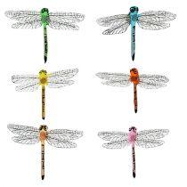 Dragonflies on the clip 6,5cm x 8,5cm 12pcs