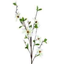 Magnolia branch white-green 94cm