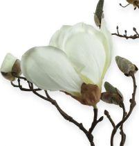 Magnolia branch white 110cm
