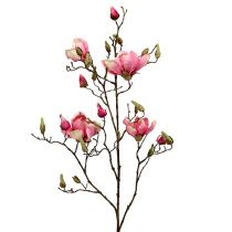 Magnolia branch Violet 110cm 1pc