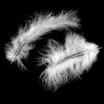 Decorative feathers, marabou feathers, Easter decorations, feathers for handicrafts White 45g