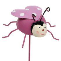 Ladybug plug Purple Ø7cm L23cm 6pcs