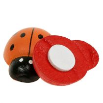 Ladybug colorful 2.5cm 60pcs