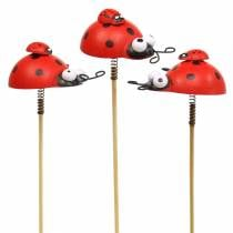Decorative plug ladybird on the stick wood red, black 4cm x 2.5cm H23.5cm 16pcs