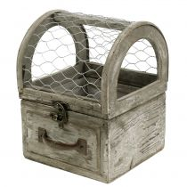 Box with wire for planting 13,5x13,5x18,5cm