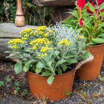 Metal pot with rope handles, planter bowl, autumn, patina Ø22cm H12cm