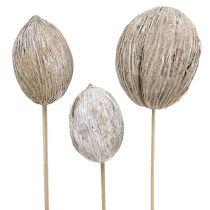Mintolla ball on stick mix white washed 6pcs