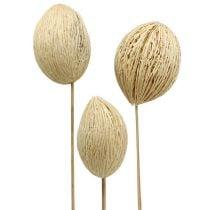 Mintolla ball bleached 8cm - 10cm L46cm 6pcs