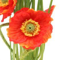 Poppy red in the grass 23cm