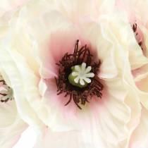 Poppy white, pink 29cm 6pcs