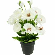 Poppy in a pot white silk flowers floral decoration