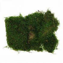 Decorative moss for handicrafts green, dark green 100g