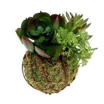Kokedama Artificial Green Ø7cm