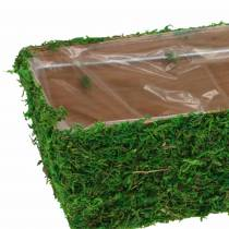 Planter moss green 20 × 10cm H9cm