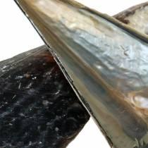 Shells Black 24 - 30cm 1kg