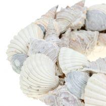 Shell wreath white Ø14cm