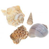 Shell mix natural 500g