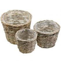 Basket pot for planting nature white washed Ø25cm set of 3