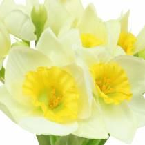 Narcissus cream L42cm 3pcs