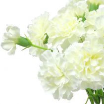 Carnation White 64cm 4pcs