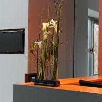 OASIS® Black Table Deco Medi floral foam 4pcs