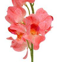 Orchid Mokara Salmon 50cm 6pcs