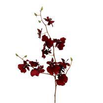 Orchid Oncidium 70cm Dark Red 3pcs