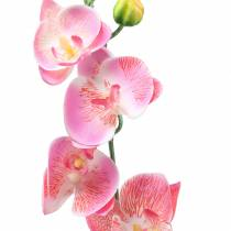 Orchid Phalaenopsis Artificial Pink 60cm
