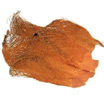 Palm fiber natural 1kg