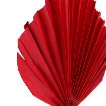 Palmspear mini red 100p