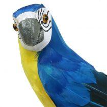 Deco Parrot Blue 44cm