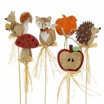Plant plug autumn assortment 12p