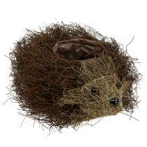 Hedgehog planter made of vines 22cm x 25cm