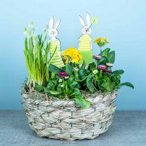 Planter made of hay, decorative basket, plant basket, oval flower basket, set of 3